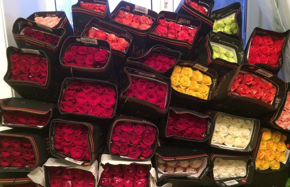 Дешевые розы оптом киев, букет